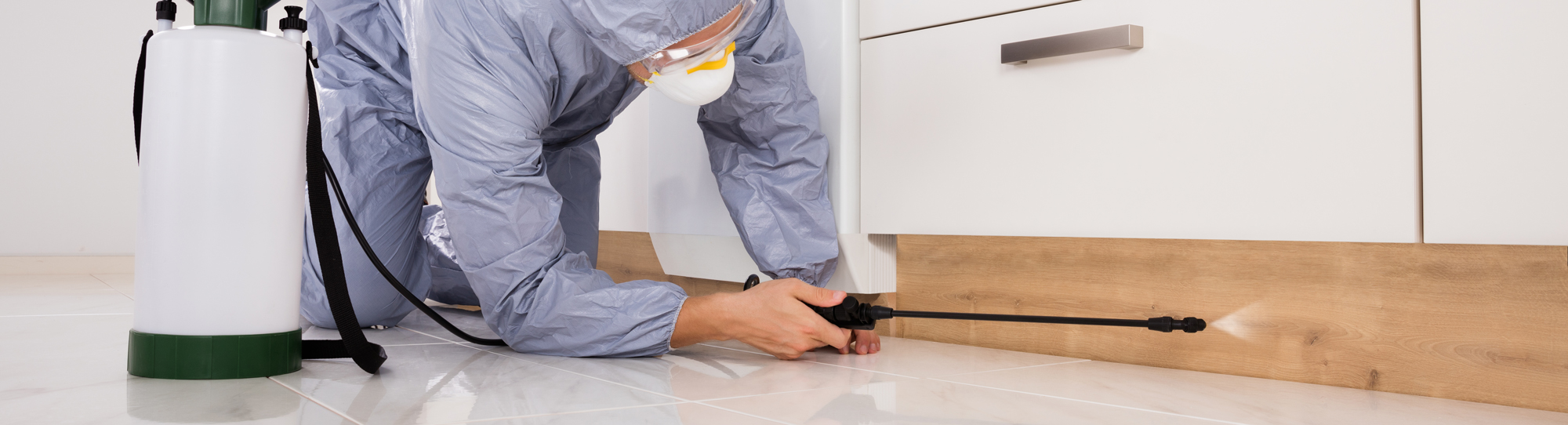 Pest Control Opportunities
