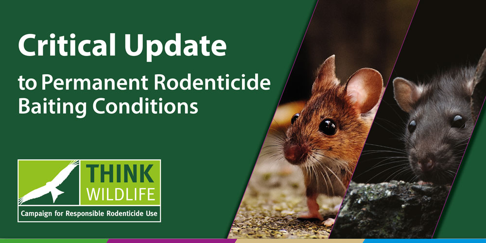 Critical update to permanent rodenticide baiting conditions