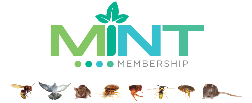 Mint Member Savings