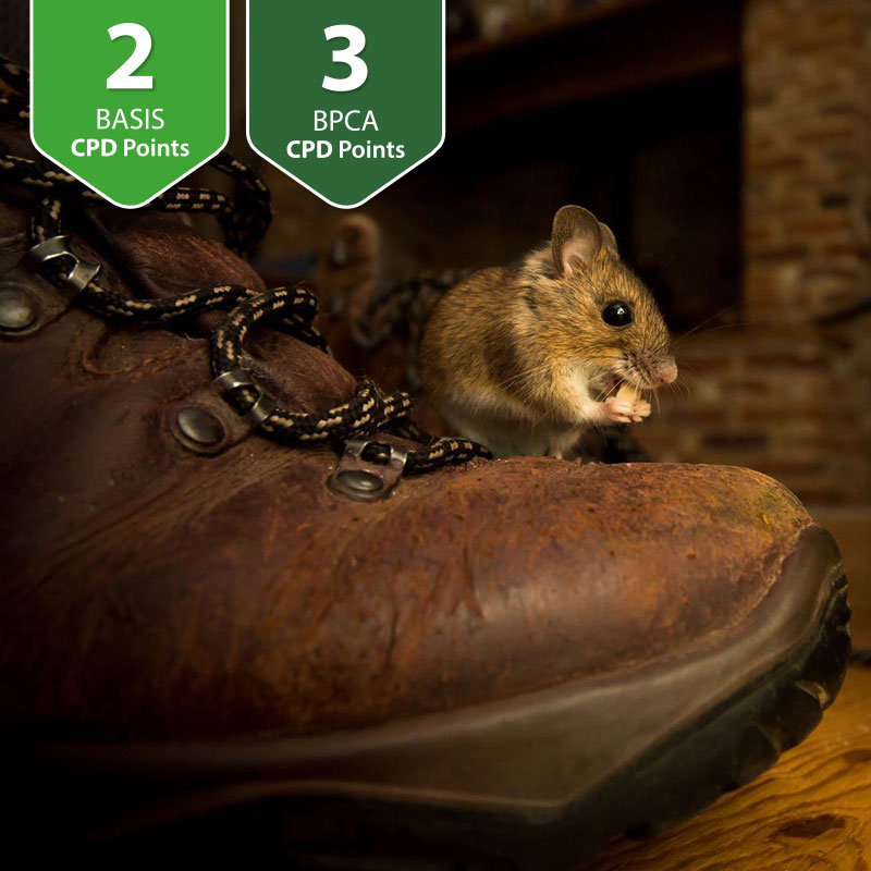 Responsible & Effective Control of Commensal Rodents
