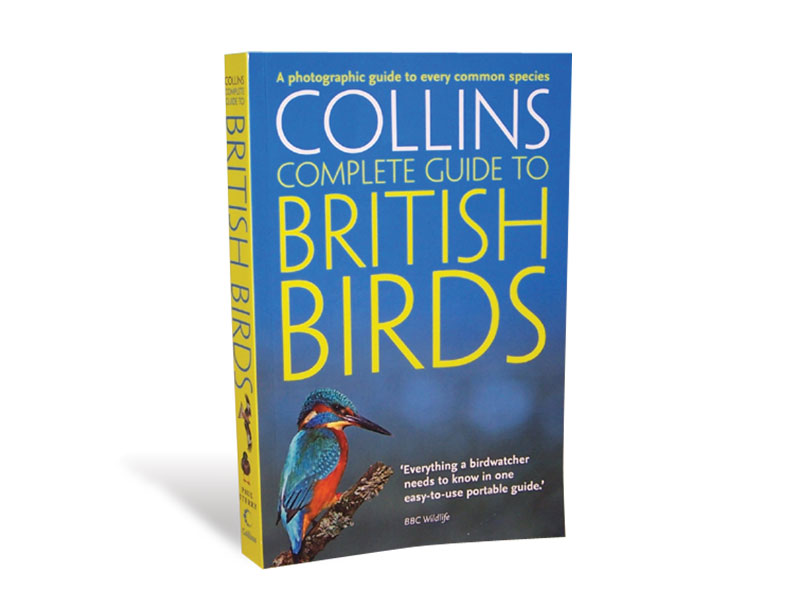 Collins Complete Guide to British Birds*