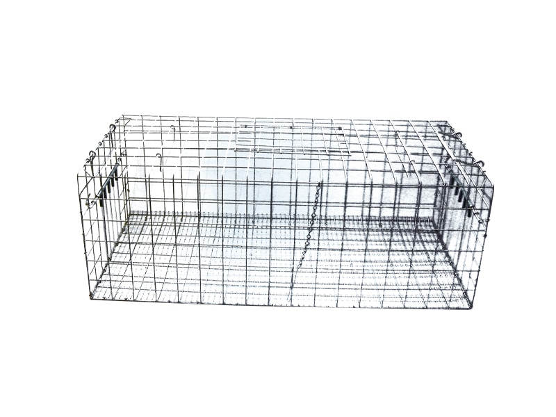 'Foldaway' Feral Pigeon Trap no base