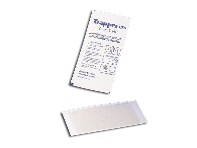 Trapper LTD Glue Trap