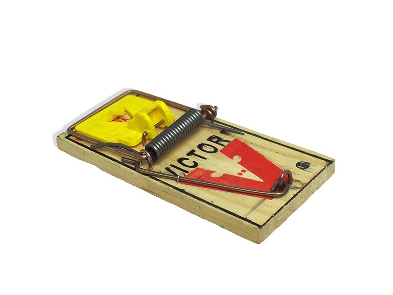 Little Victor Mouse Trap